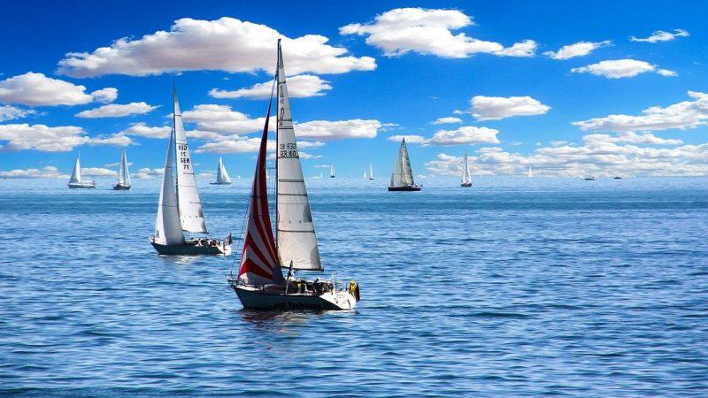 Les sports nautiques : Exemples de sports d'équipe